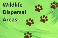 Wildlife Dispersal Areas in KAZA